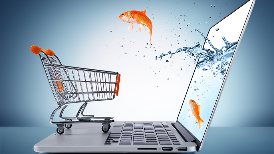 E-commerce and digital marketing